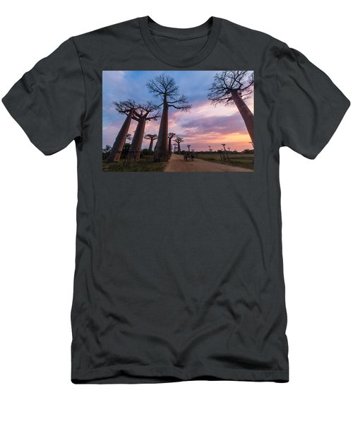 The Road To Morondava Men's T-Shirt (Athletic Fit)