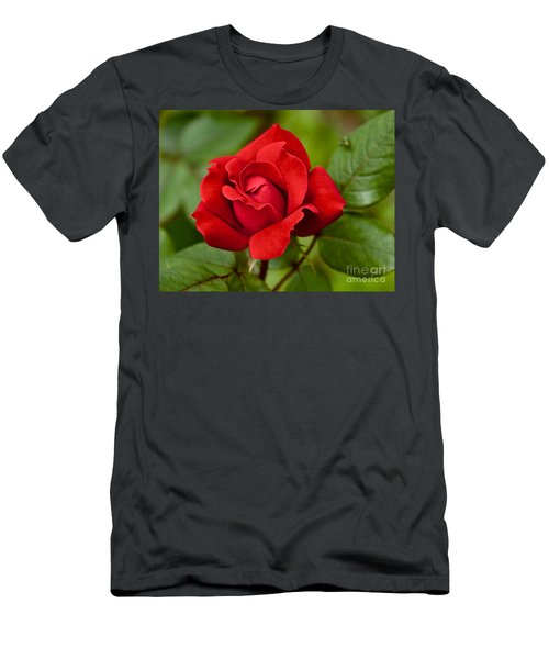 Men's T-Shirt (Athletic Fit) featuring the photograph The Rose by William Norton
