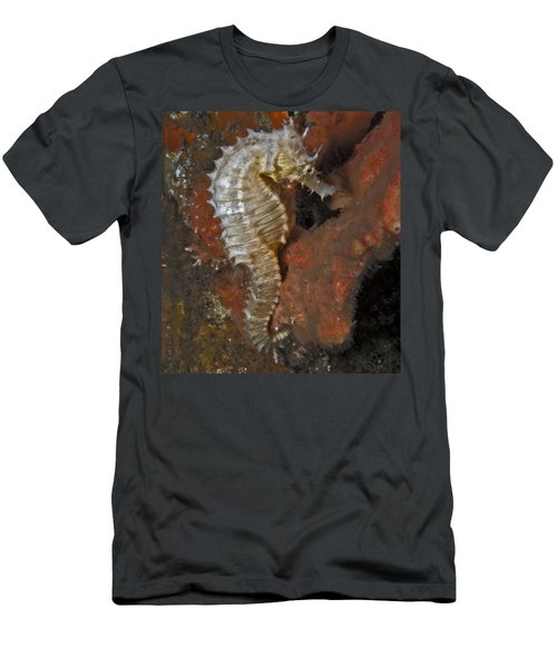 The White Seahorse Men's T-Shirt (Athletic Fit)