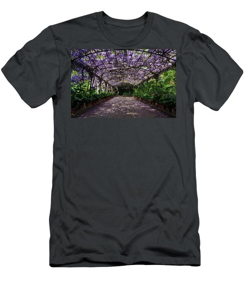 The Wisteria Arbour In Full Bloom Men's T-Shirt (Athletic Fit)
