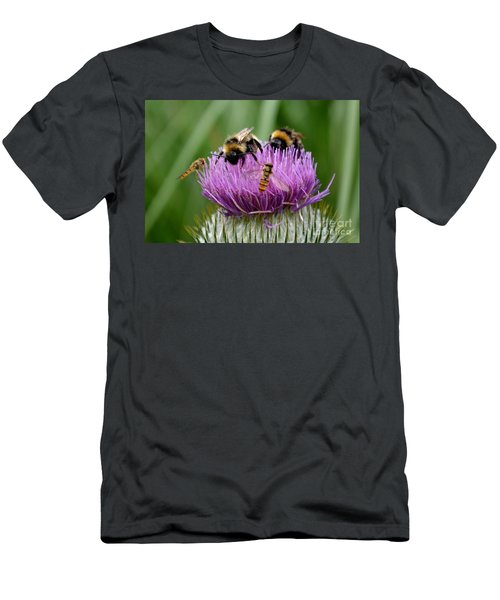 Thistle Wars Men's T-Shirt (Athletic Fit)