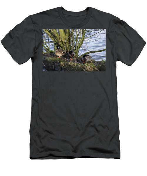 Three In A Row Men's T-Shirt (Slim Fit) by Spikey Mouse Photography