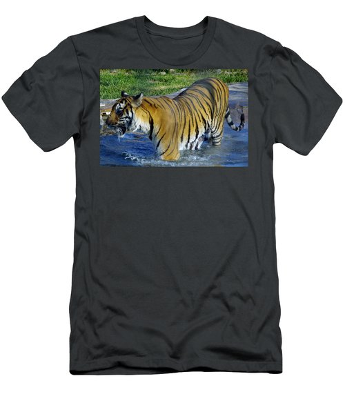 Tiger 4 Men's T-Shirt (Athletic Fit)