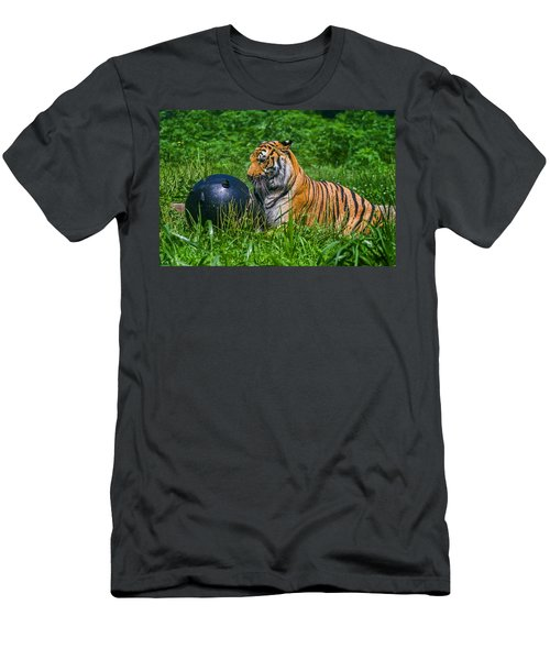 Tiger Playing With Ball Men's T-Shirt (Athletic Fit)