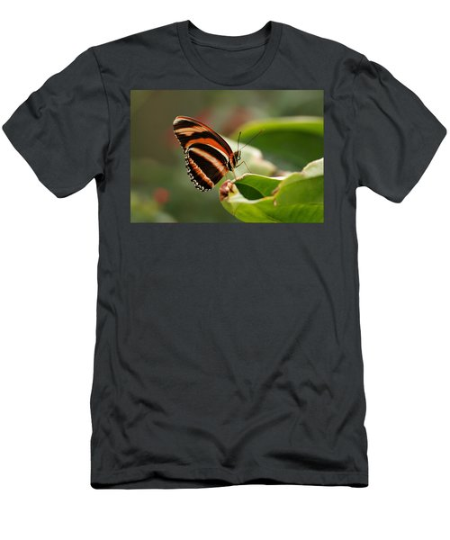 Tiger Striped Butterfly Men's T-Shirt (Athletic Fit)
