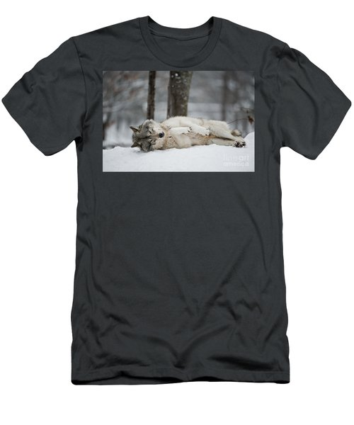 Timber Wolf In Winter Men's T-Shirt (Athletic Fit)