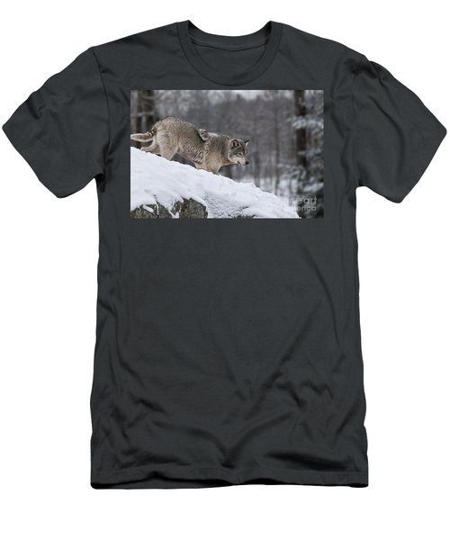 Timber Wolf On Hill Men's T-Shirt (Athletic Fit)