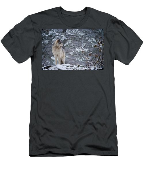 Timber Wolf Pictures 189 Men's T-Shirt (Athletic Fit)