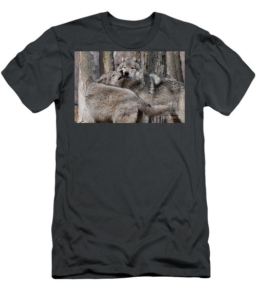 Men's T-Shirt (Slim Fit) featuring the photograph Timber Wolves Playing by Wolves Only