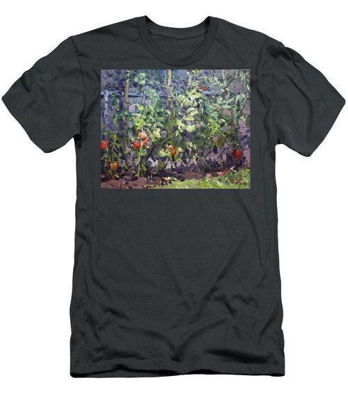 Tomatoes In Viola's Garden  Men's T-Shirt (Athletic Fit)