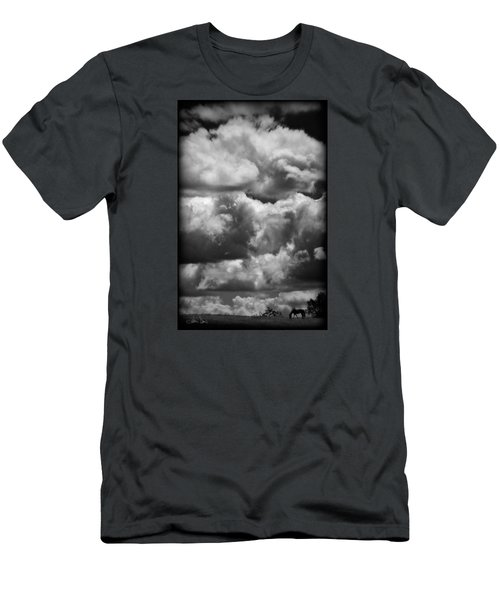 Top Of The World Men's T-Shirt (Slim Fit) by Joan Davis
