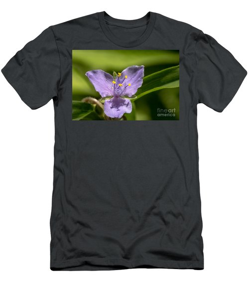 Tradescantia Virginiana Men's T-Shirt (Athletic Fit)