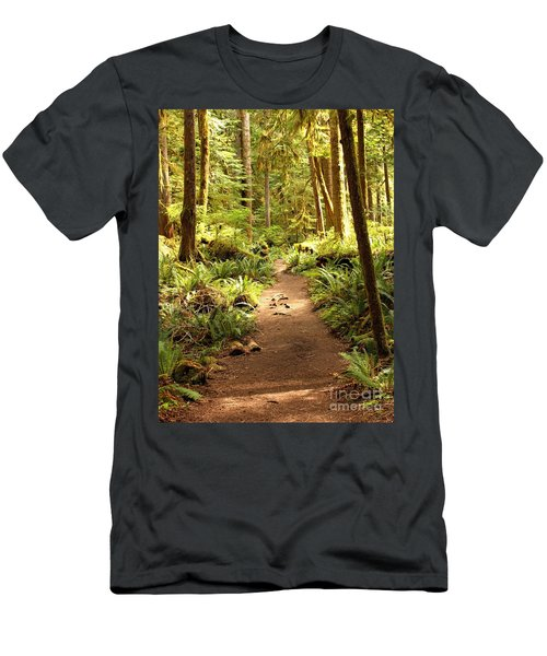 Trail Through The Rainforest Men's T-Shirt (Athletic Fit)