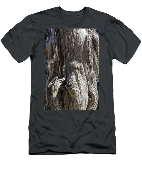 Men's T-Shirt (Slim Fit) featuring the photograph Tree Bark No. 3 by Lynn Palmer
