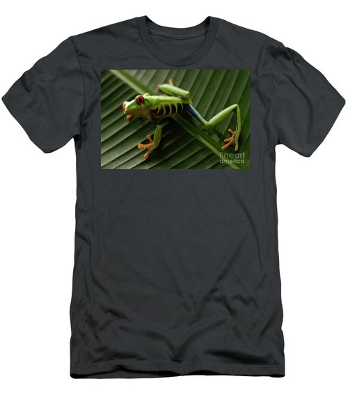 Tree Frog 16 Men's T-Shirt (Athletic Fit)