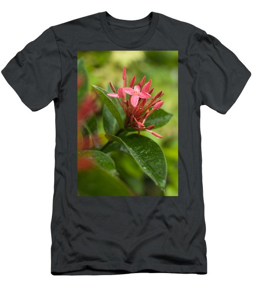 Tropical Flowers In Singapore Men's T-Shirt (Athletic Fit)
