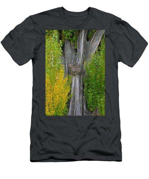Trunk Lines Men's T-Shirt (Athletic Fit)