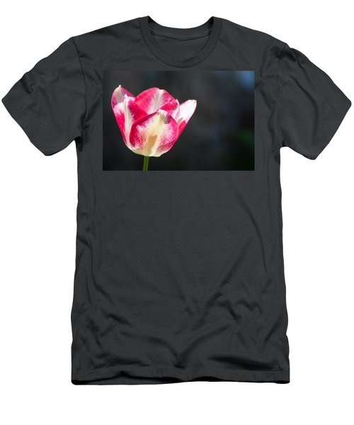 Tulip On Black Men's T-Shirt (Slim Fit) by Photographic Arts And Design Studio