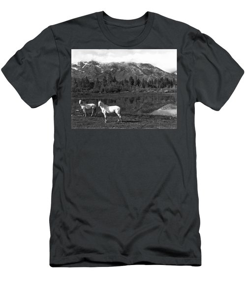 Two White Horses By A Pond Men's T-Shirt (Athletic Fit)