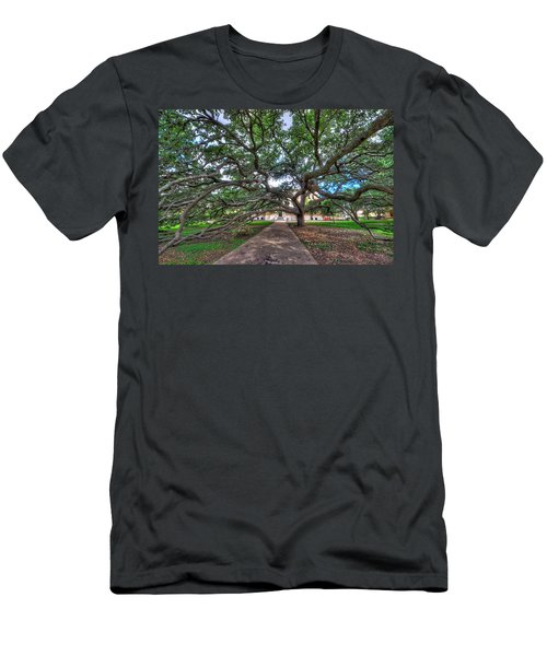 Under The Century Tree Men's T-Shirt (Slim Fit) by David Morefield