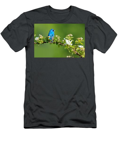 Vibrance Of Spring Men's T-Shirt (Athletic Fit)