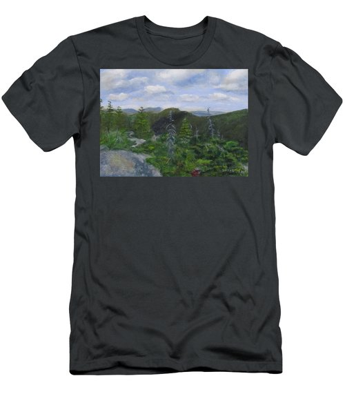 View From Noon Peak Men's T-Shirt (Athletic Fit)