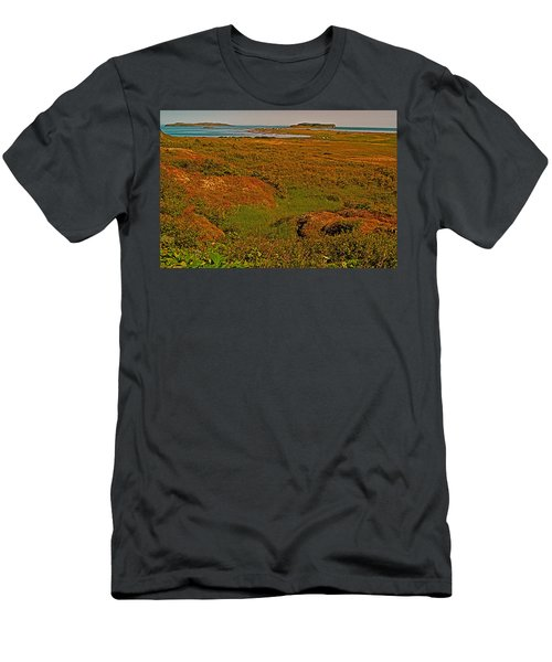 Viking Landing Point At L'anse Aux Meadows-nl Men's T-Shirt (Athletic Fit)