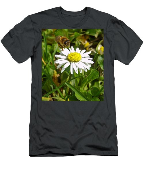 Visiting Miss Daisy Men's T-Shirt (Athletic Fit)