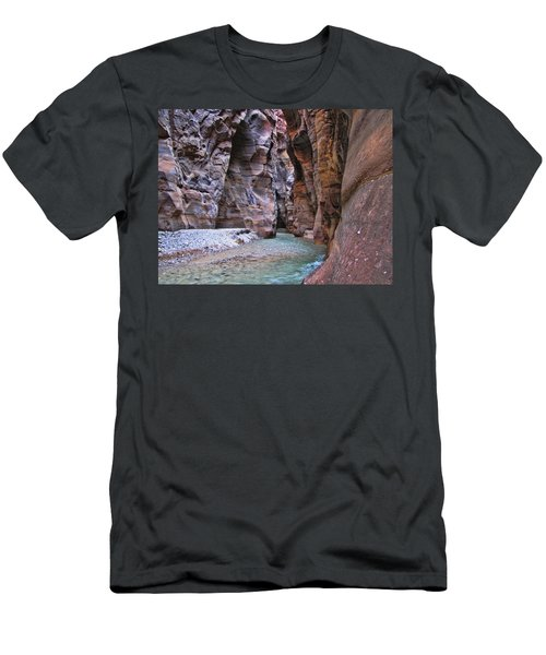Wadi Mujib Men's T-Shirt (Slim Fit) by David Gleeson