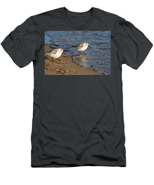 Wading Sanderlings Men's T-Shirt (Athletic Fit)