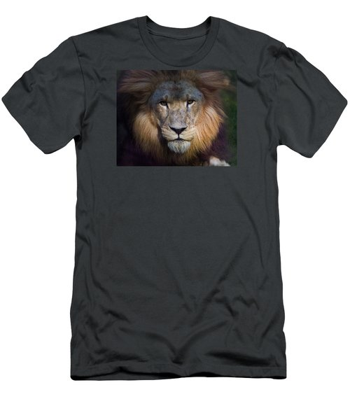 Waiting In The Shadows Men's T-Shirt (Slim Fit) by Tim Stanley