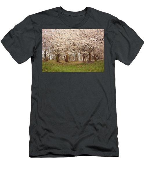 Washington Dc Cherry Blossoms Men's T-Shirt (Athletic Fit)