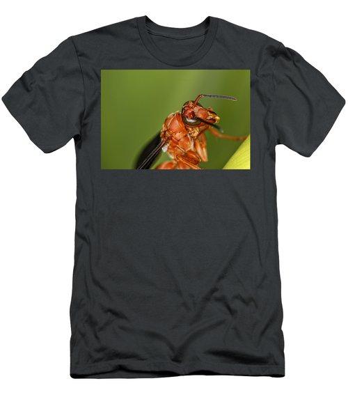 Wasp 1 Men's T-Shirt (Athletic Fit)
