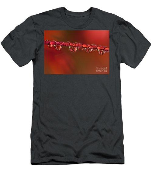 Water Line Men's T-Shirt (Athletic Fit)