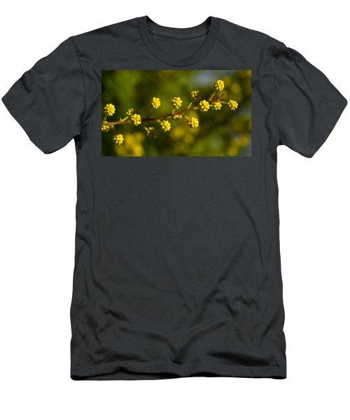 Wattle Buds - Australia Men's T-Shirt (Athletic Fit)