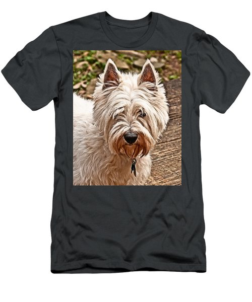 West Highland White Terrier Men's T-Shirt (Athletic Fit)