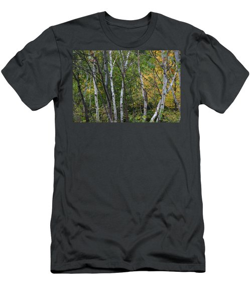 Men's T-Shirt (Slim Fit) featuring the photograph White Birches In The Woods by Denyse Duhaime