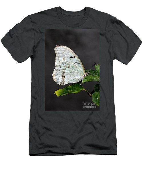 White Butterfly Men's T-Shirt (Athletic Fit)