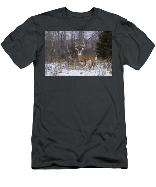 White-tailed Buck & Doe Men's T-Shirt (Athletic Fit)