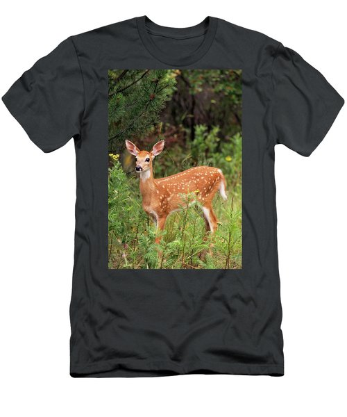 White-tailed Deer Fawn Odocoileus Men's T-Shirt (Athletic Fit)