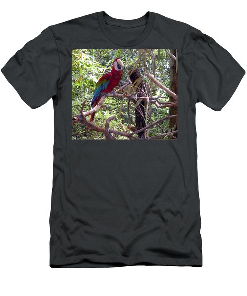 Men's T-Shirt (Slim Fit) featuring the photograph Wild Hawaiian Parrot  by Joseph Baril
