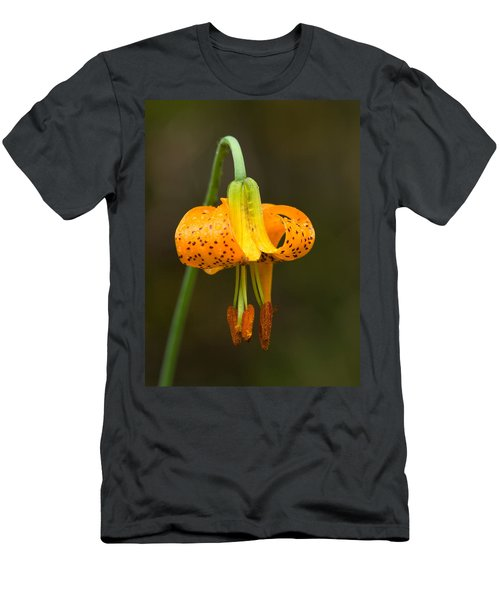 Wild Tiger Lily Men's T-Shirt (Athletic Fit)