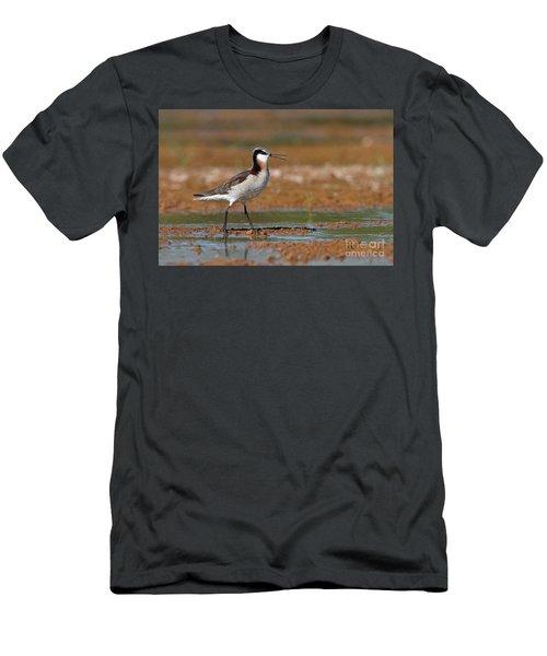 Wilson's Phalarope Calling Men's T-Shirt (Athletic Fit)