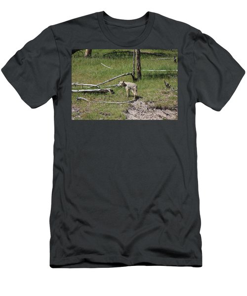 Yellowstone Coyote Men's T-Shirt (Athletic Fit)