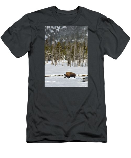 Yellowstone Winter Men's T-Shirt (Slim Fit) by Alan Toepfer
