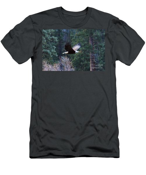 Yosemite Bald Eagle Men's T-Shirt (Athletic Fit)
