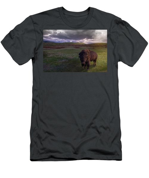 You May Not Pass Men's T-Shirt (Athletic Fit)