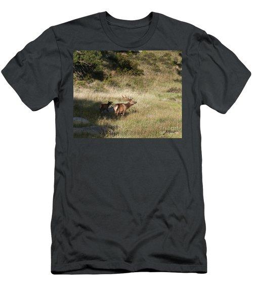 Young Bull Elk Men's T-Shirt (Athletic Fit)