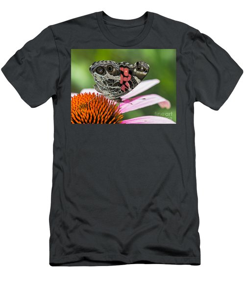 Butterfly Feeding Men's T-Shirt (Athletic Fit)
