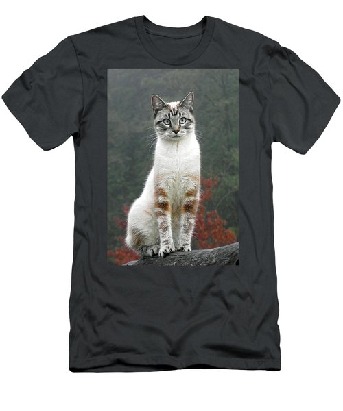 Zing The Cat Men's T-Shirt (Athletic Fit)